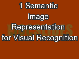 1 Semantic Image Representation for Visual Recognition