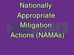 Nationally Appropriate Mitigation Actions (NAMAs)