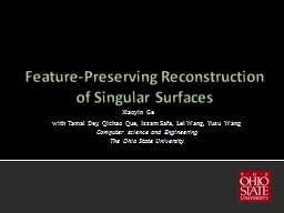 Feature-Preserving Reconstruction of Singular Surfaces