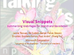 Visual Snippets