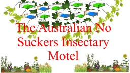 The Australian No Suckers Insectary Motel