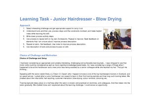 Learning Task  Junior Hairdresser  Blow Drying Approac