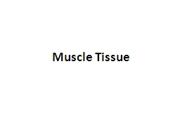 Muscle Tissue What is Muscle Tissue?