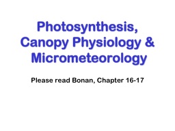 Photosynthesis, Canopy Physiology & Micrometeorology