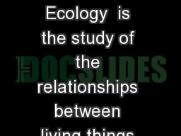 Ecology Ecology Ecology  is the study of the relationships between living things (animals and plant