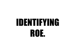 IDENTIFYING ROE. BRAND. A brand is more than a logo.