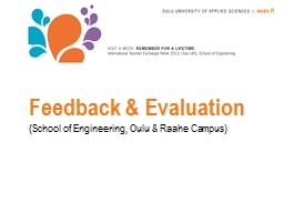 Feedback & Evaluation