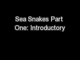Sea Snakes Part One: Introductory