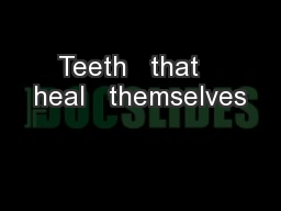 Teeth   that   heal   themselves