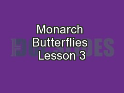 Monarch Butterflies Lesson 3
