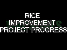 RICE IMPROVEMENT PROJECT PROGRESS