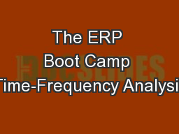 The ERP Boot Camp Time-Frequency Analysis PowerPoint PPT Presentation