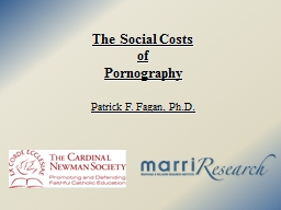 The Social Costs  of  Pornography