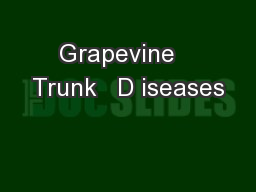Grapevine   Trunk   D iseases PowerPoint PPT Presentation