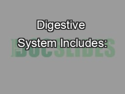 Digestive System Includes:
