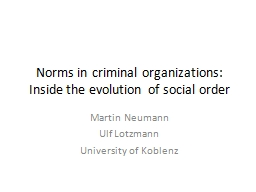 Norms in criminal organizations: