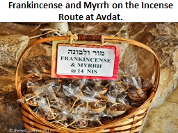 Frankincense and Myrrh on the Incense Route at