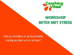 Workshop Beter met stress