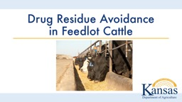 Drug Residue Avoidance in Feedlot Cattle