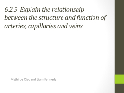 6.2.5 Explain the relationship between the structure and function of arteries, capillaries and ve