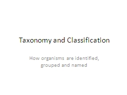 Taxonomy and Classification PowerPoint PPT Presentation
