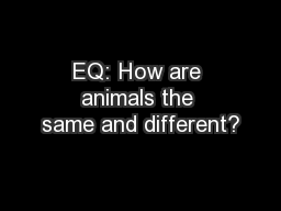 EQ: How are animals the same and different?