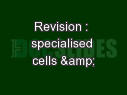 Revision : specialised cells &