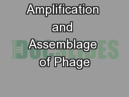 Amplification and Assemblage of Phage