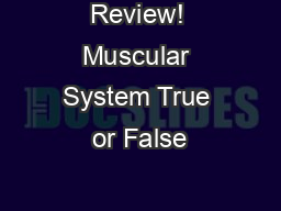 Review! Muscular System True or False PowerPoint PPT Presentation