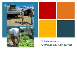 Subsistence vs. Commercial Agriculture