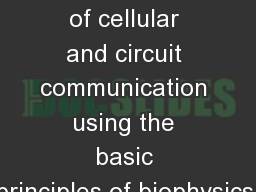 Explanation of cellular and circuit communication using the basic principles of biophysics.