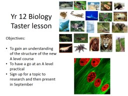 Yr  12 Biology  Taster lesson PowerPoint PPT Presentation