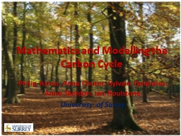 Data Assimilation and Modelling the Carbon Cycle