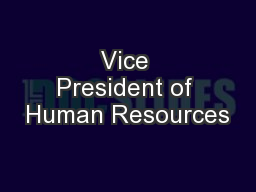 Vice President of Human Resources