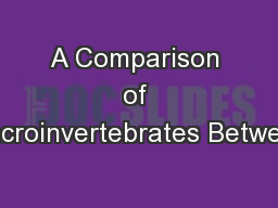 A Comparison of Macroinvertebrates Between