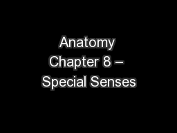 Anatomy Chapter 8 - Special Senses