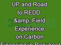 AR-CDM Initiatives in  UP and Road to REDD  & Field Experience on Carbon Financing in Renukoot