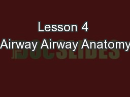 Lesson 4 Airway Airway Anatomy PowerPoint PPT Presentation
