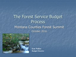 The Forest Service Budget Process