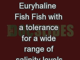 Some  Euryhaline  Fish Fish with a tolerance for a wide range of salinity levels.