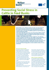 Preventing social stress in cattle in feed bunks