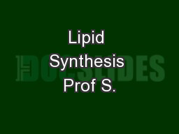Lipid Synthesis Prof S.