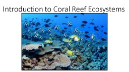 Introduction to Coral Reef Ecosystems