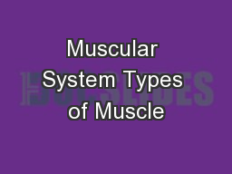 Muscular System Types of Muscle