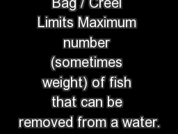 Bag / Creel Limits Maximum number (sometimes weight) of fish that can be removed from a water.