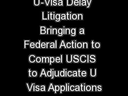 U-Visa Delay Litigation Bringing a Federal Action to Compel USCIS to Adjudicate U Visa Applications