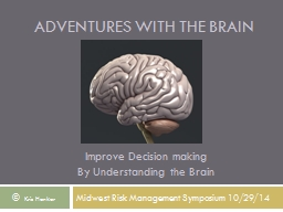 Adventures with the Brain PowerPoint PPT Presentation