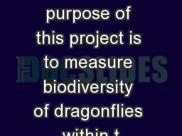 Introduction The primary purpose of this project is to measure biodiversity of dragonflies within t