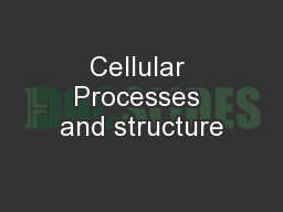 Cellular Processes and structure PowerPoint PPT Presentation