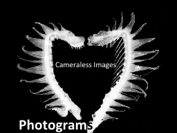 Photogram s Cameraless  Images